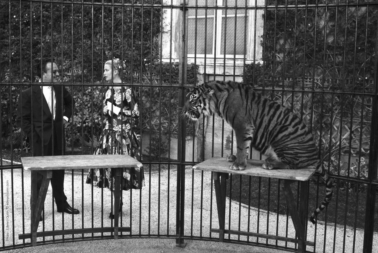 Le prince et l'actrice devant la cage du tigre dans les jardins du Palais