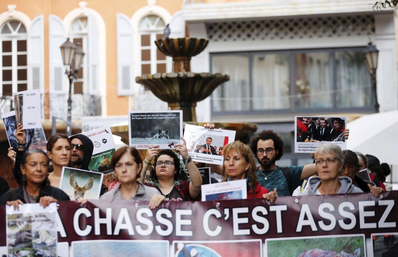 Le cortège d'une cinquantaine de personnes est parti du cours Honoré-Cresp et a traversé les allées du centre historique, en s'arrêtant à plusieurs endroits pour clamer un discours en faveur du loup.