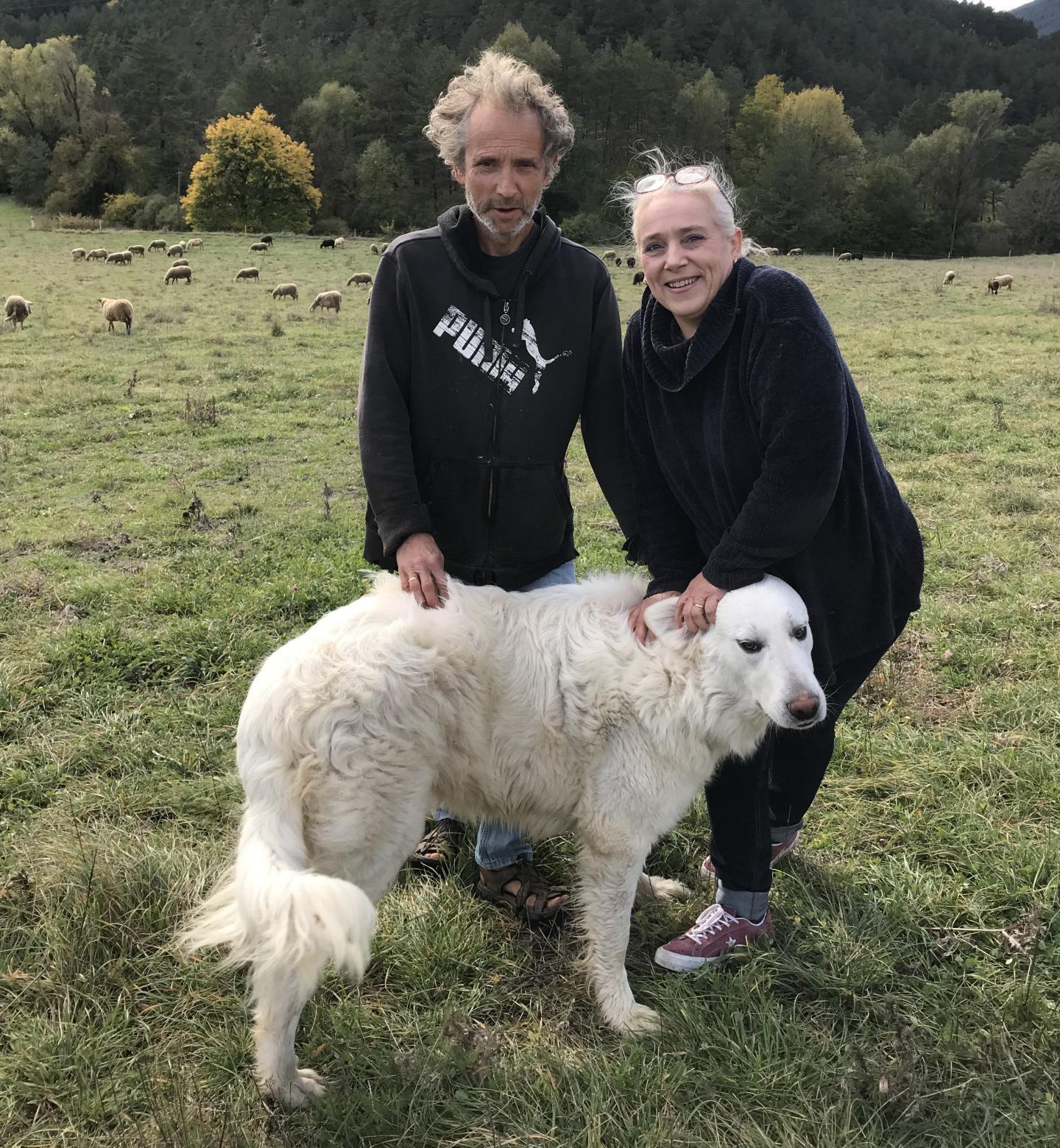 Marc et Carole: de la com' à Paris à l'élevage de brebis!