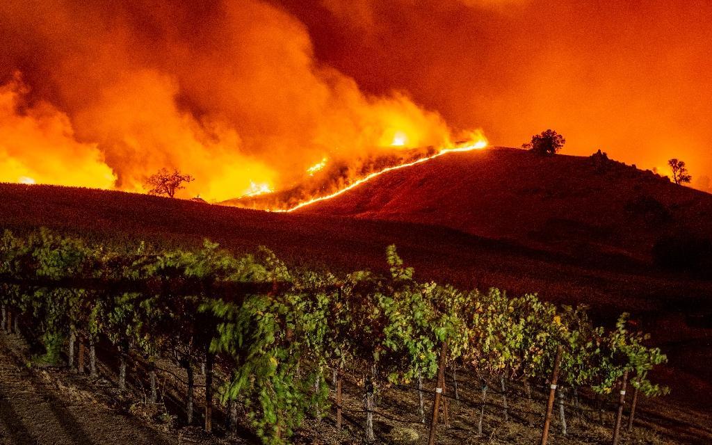 """Le """"Kincade Fire"""" s'approche des vignes, près de Geyserville, le 24 octobre 2019 en Californie"""