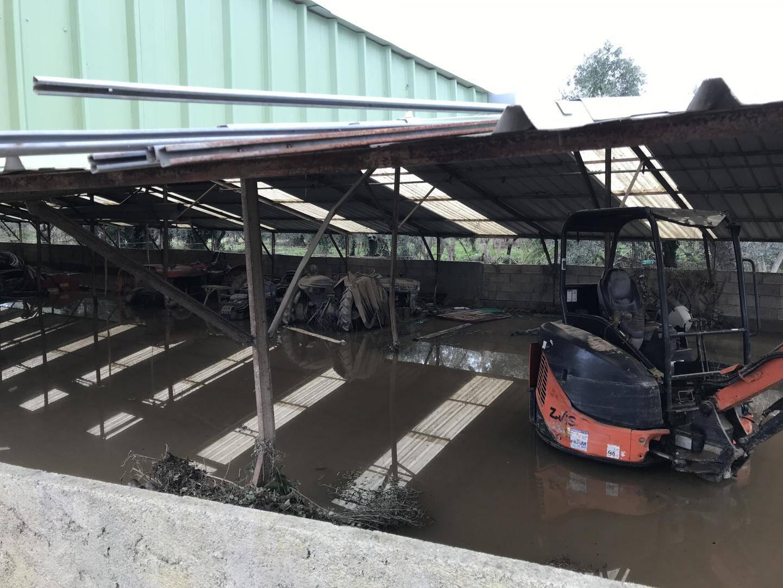 L'entrepôt des tracteurs de Jean-Charles Orso: une piscine...