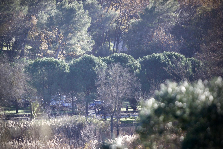 Derrière les pins, on aperçoit les lieux de la découverte du corps et les enquêteurs en train de rechercher les premiers indices. Le périmètre a été bouclé tout au long de la journée d'hier.