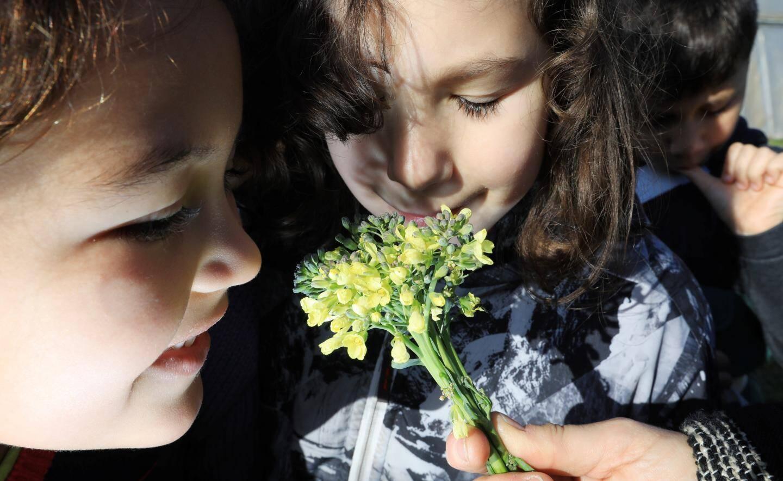 Ines et Marie-Lou: le ravissement de sentir une fleur de brocoli..
