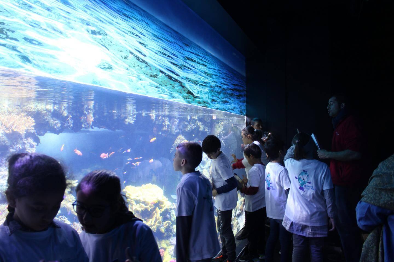Face aux différents aquariums, l'animateur explique l'origine et les caractéristiques de certaines espèces.