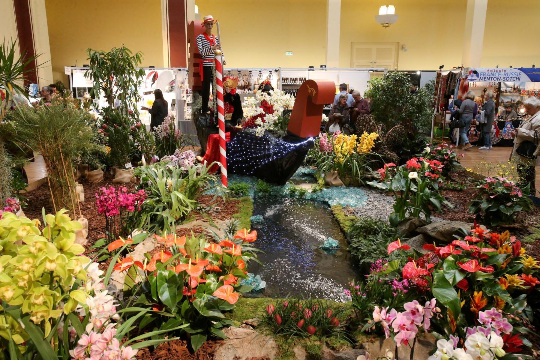 Le festival des orchidées réunit plus de 60 espèces d'orchidées botaniques.