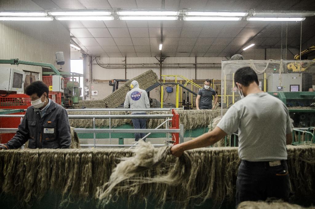 Des employés dans une usine de lin à Villons-Les-Buissons (Calvados), le 15 juillet 2020.