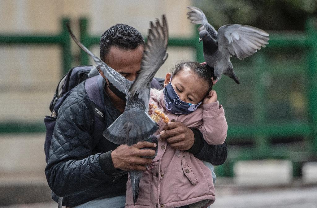 Un homme et sa fille masqués nourrissent des pigeons à Bogota le 3 juillet 2020.