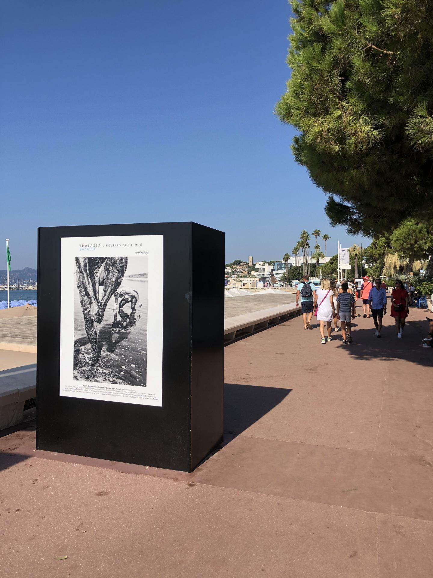 Une exposition gratuite à Cannes.