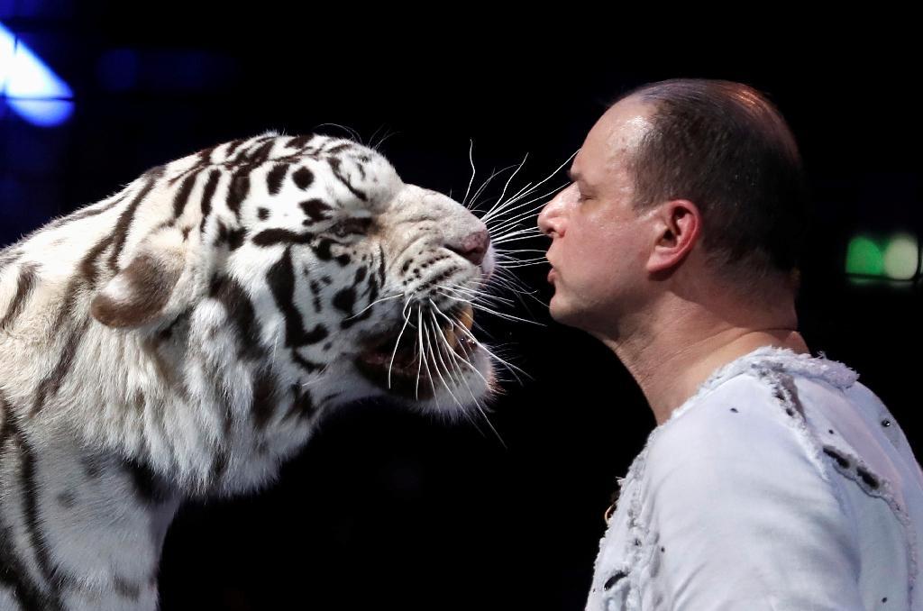 Le dresseur Sergey Nesterov lors du 44e Festival International du Cirque de Monte-Carlo à Monaco, le 21 janvier 2020