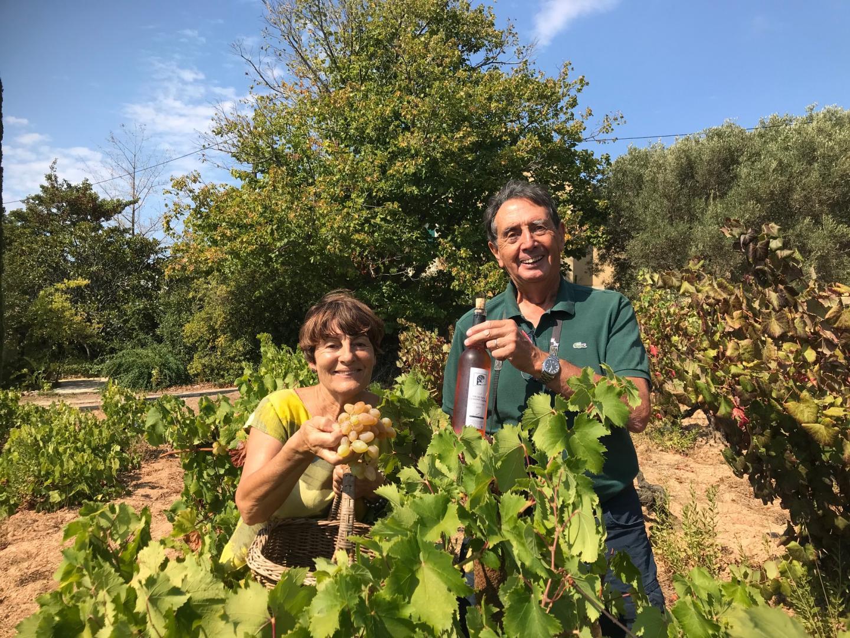 Janine et Yvon Nicol au milieu de la vigne plantée en 1950 dans le quartier de Coste Chaude.
