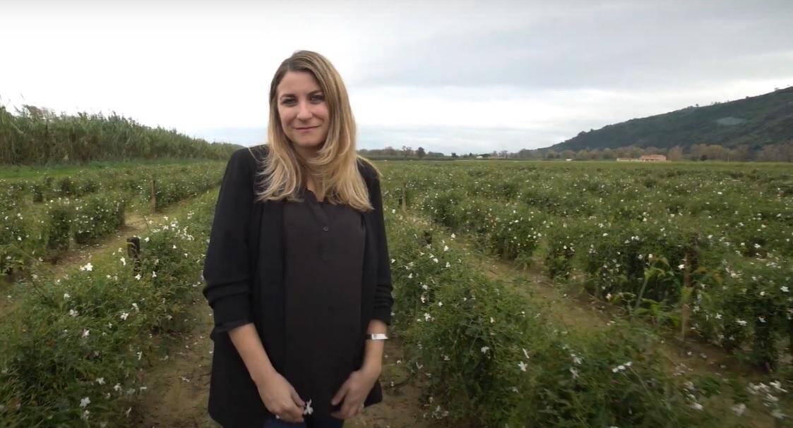 Cécile Mul, président de Jean Gazignaire, Pégomas.