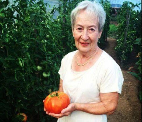 La famille Maurel a récolté une tomate d'1,1 kg.