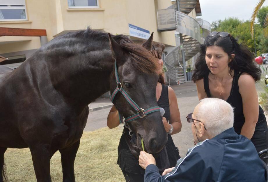 Visiblement à l'aise avec le cheval, ce senior lui a même fait une démonstration  d'autorité !
