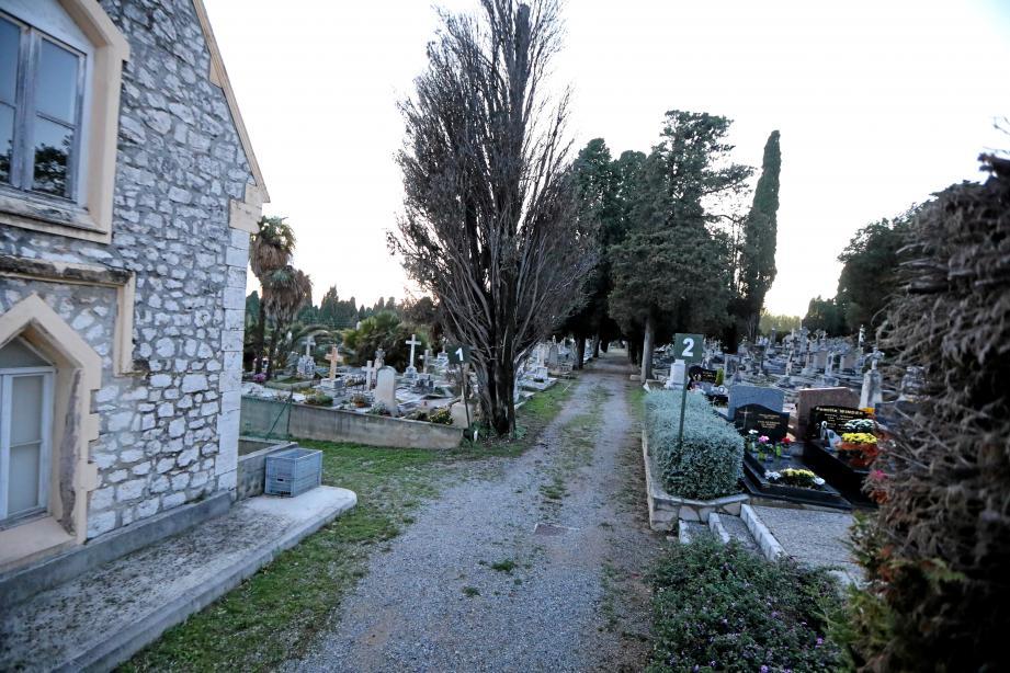 Au cimetière Sainte-Marguerite, carré anglais de Caucade, les herbes folles ont laissé place aux allées propres et rangées.