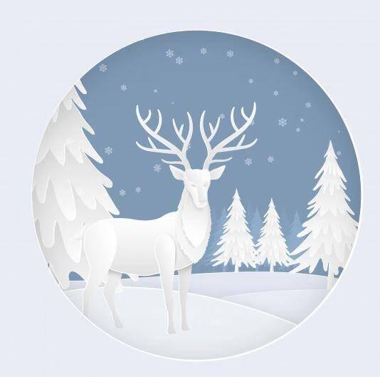 Avec la neige au rendez-vous, la saison s'annonce sous les meilleurs auspices.(DR)
