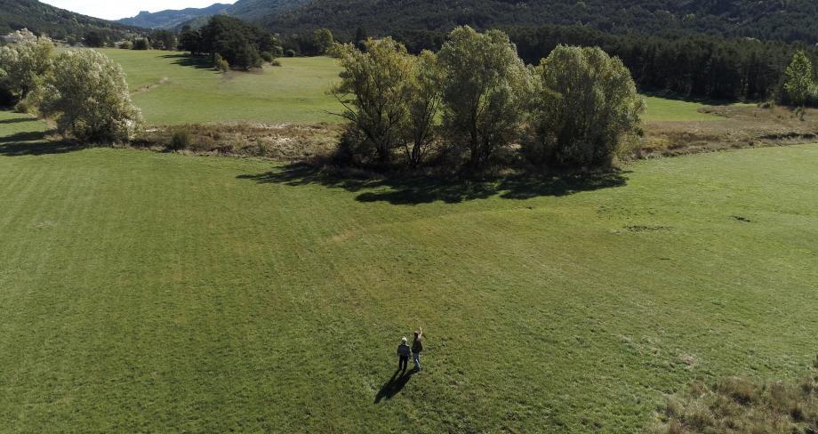 Dans la plaine de Thorenc, ce terrain a été acheté par Terre de Liens, grâce à l'argent investi par les citoyens.