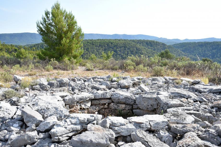 La Tholos de la Lauve est située au milieu de la pinède. Pour s'y rendre, il faut marcher un peu.