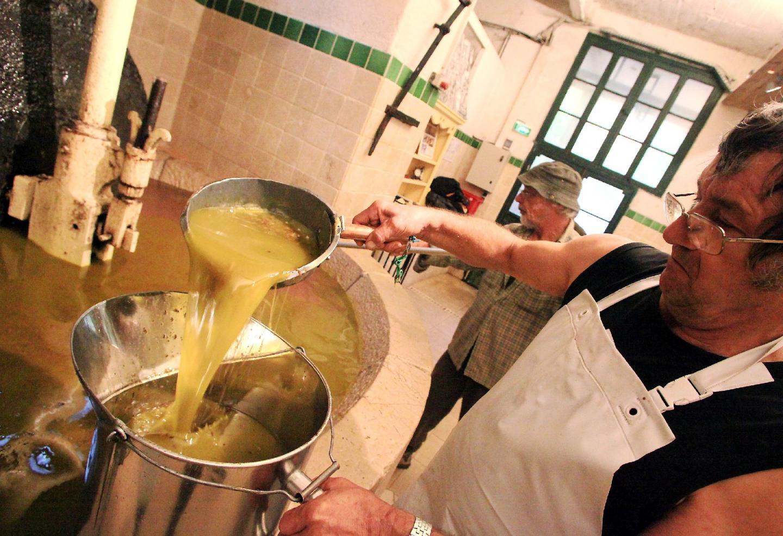 Huile : la saison des olives a déjà démarré ! - 14815963.jpg