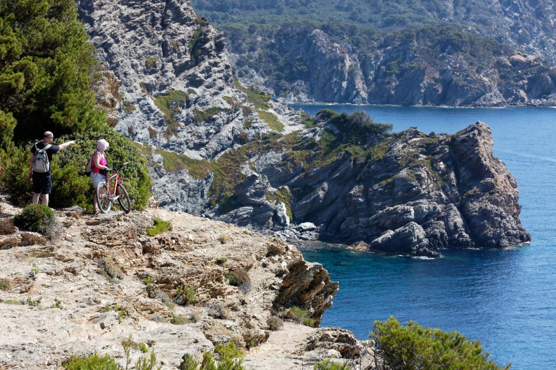 Porquerolles :  l'île aux vélos - 17772487.jpg