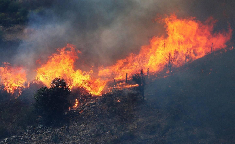 Hectares brûlés  à Calenzana - 27056733.jpg