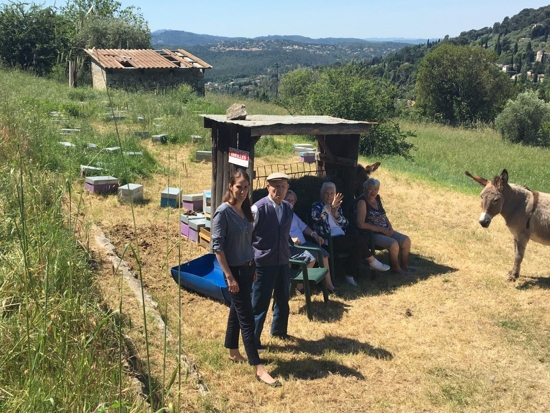 70 ruches ont été installées dans le jardin à la vue époustouflante.