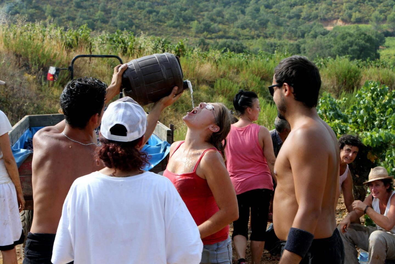 En raison des fortes chaleurs, les pause hydradation sont régulières pour l'équipe de vendangeurs.