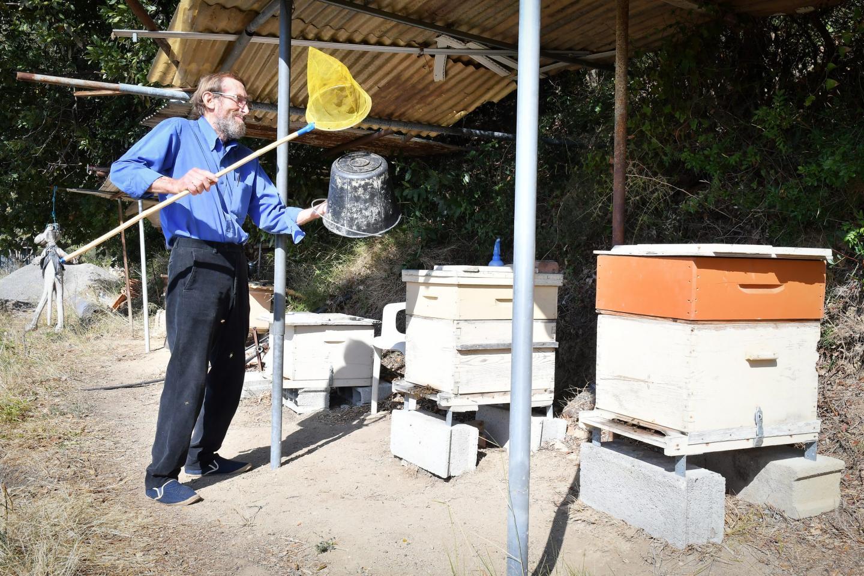 Si la méthode semble rudimentaire, l'efficacité est au rendez-vous. En aspergeant quelques frelons asiatiques avec son produit, l'apiculteur prétend pouvoir contaminer l'intégralité du nid.