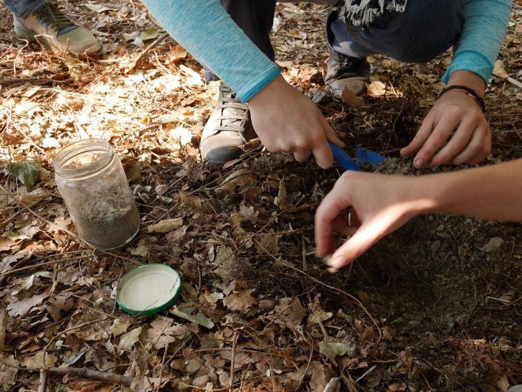 Au jardin pédagogique du petit Pessicart, enfants et adultes sont invités à mettre les mains dans la terre.