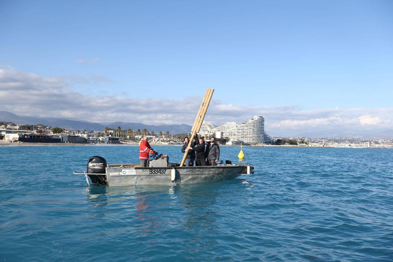 Immersions de bambous entre Villeneuve-Loubet et Antibes pour lutter contre les coups de mer.