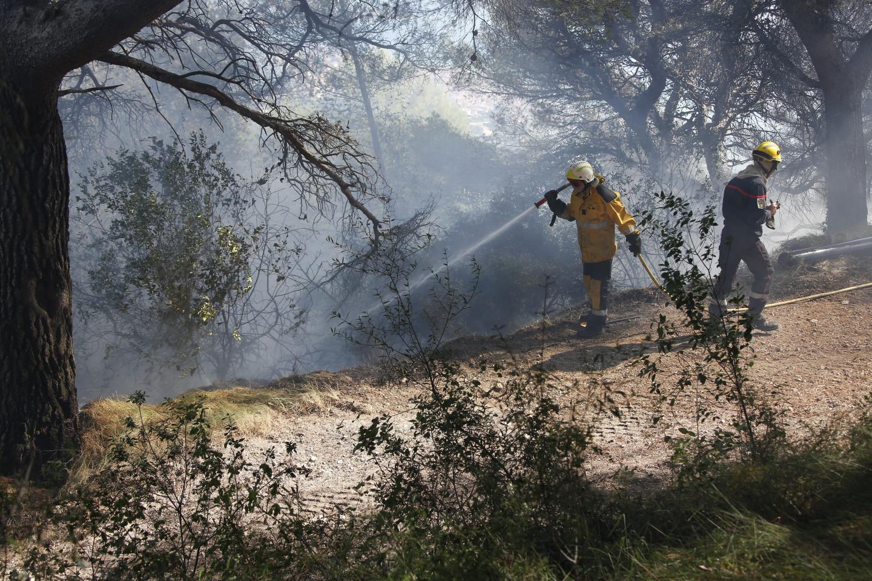 Très rapidement, trente-trois sapeurs-pompiers des casernes de Menton, Nice et La Turbie, ainsi que dix membres de l'Office national des forêts (ONF), sont intervenus sur place.