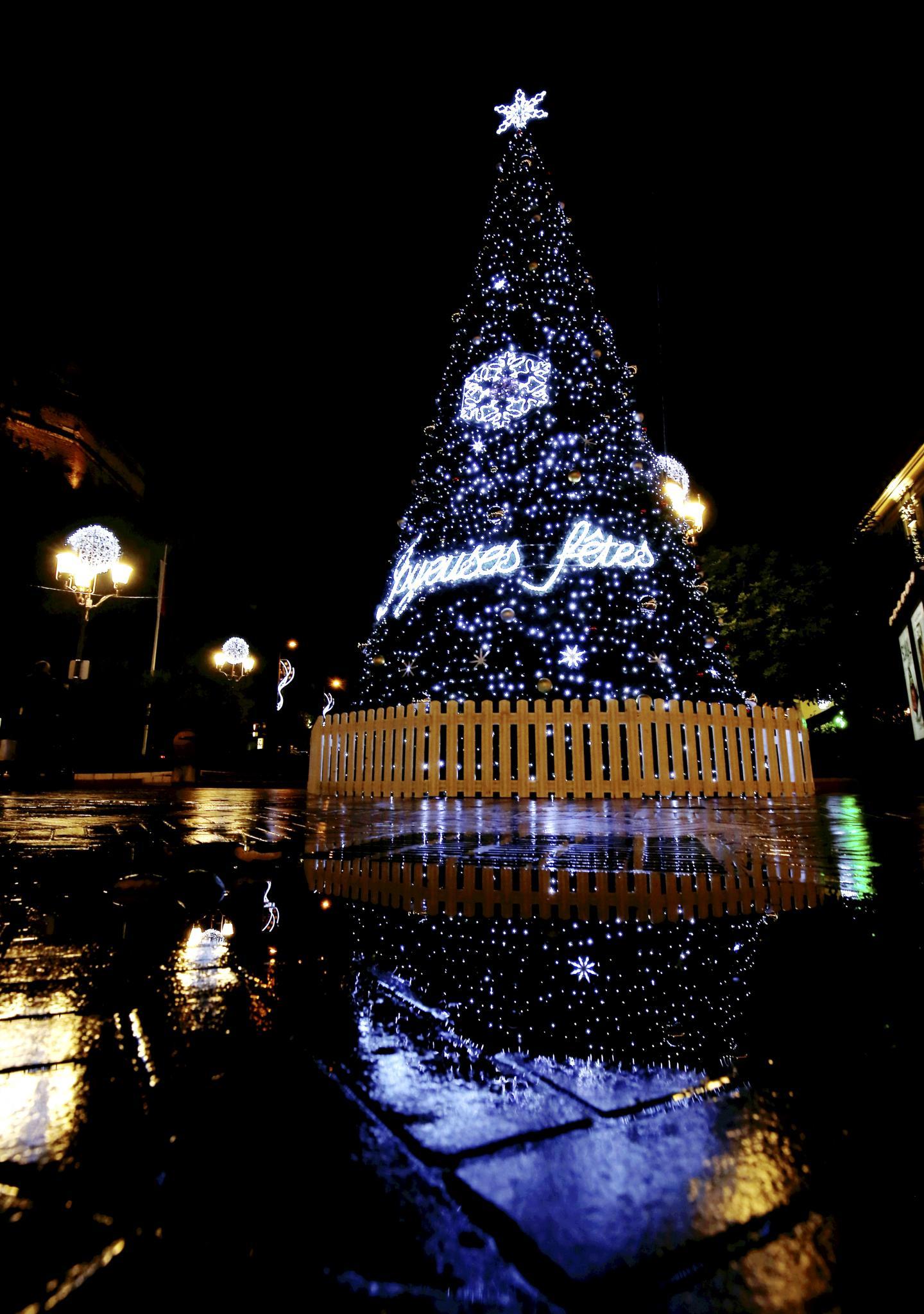 Le majestueux arbre de Noël trône place d'Armes.