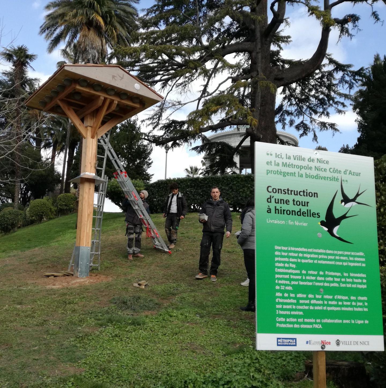 La première tour à hirondelles a été installée il y a un an au parc Chambrun.