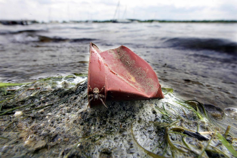 Un déchet plastique échoué sur les rives du Rhin. Illustration.