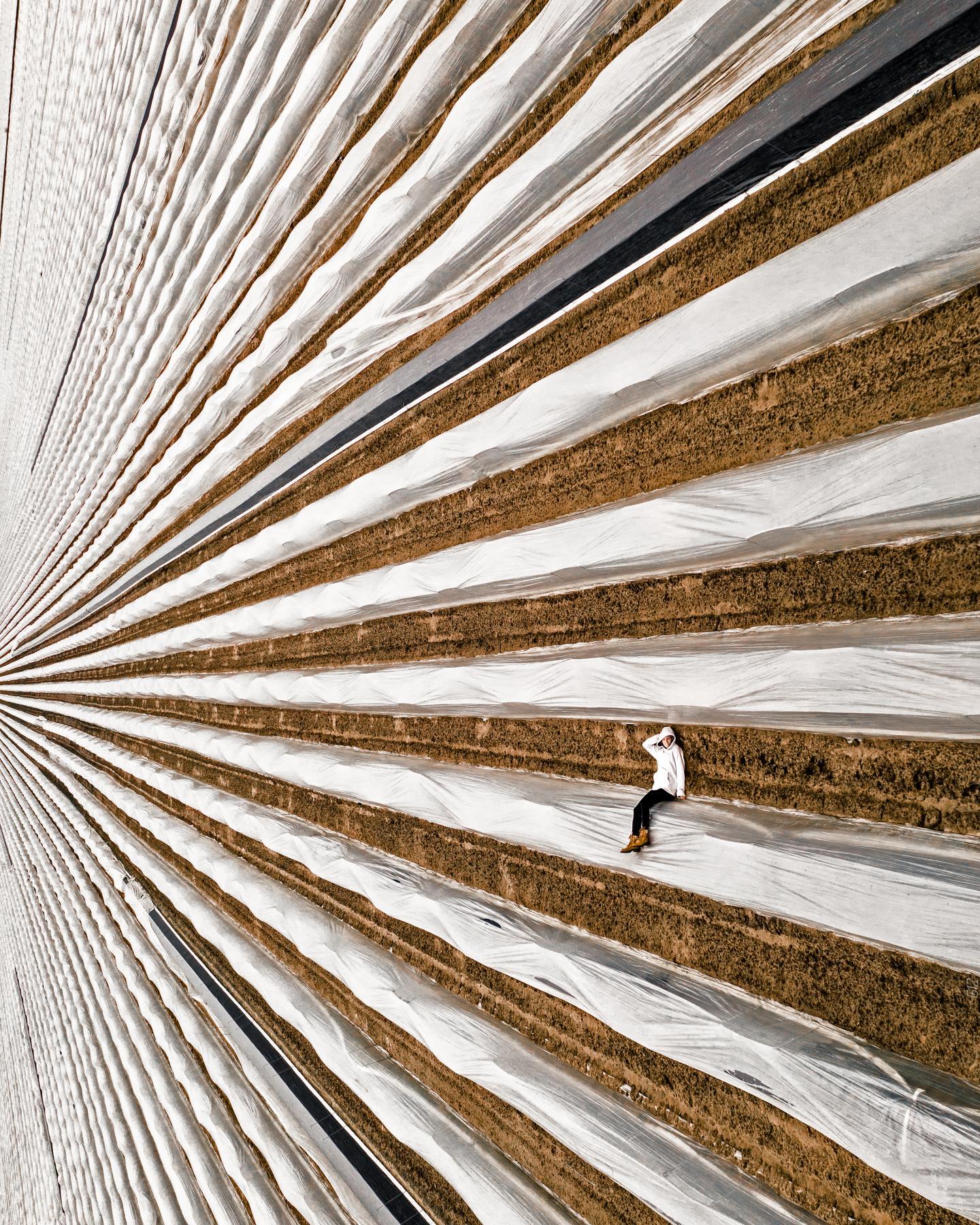 Cette dernière photo a été publiée dans le très prestigieux National Geographic.