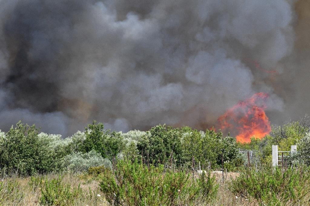Le feu fait rage à Vauvert (Gard) dans le secteur où s'est écrasé un bombardier d'eau, le 2 août 2019