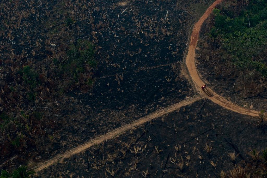 Vue aérienne d'un camion transportant des troncs d'arbre dans une zone de déforestation à Boca do Acre au Brésil, le 24 août 2019