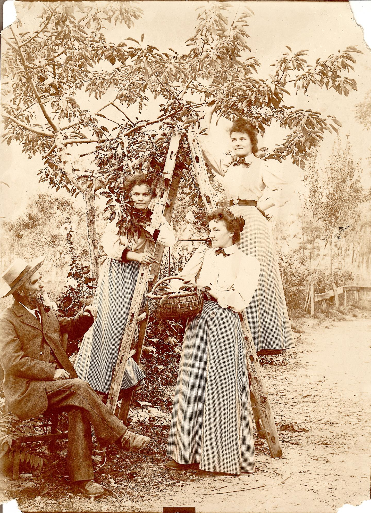 """""""Les trois sœurs"""", témoignage de la vie d'antan."""