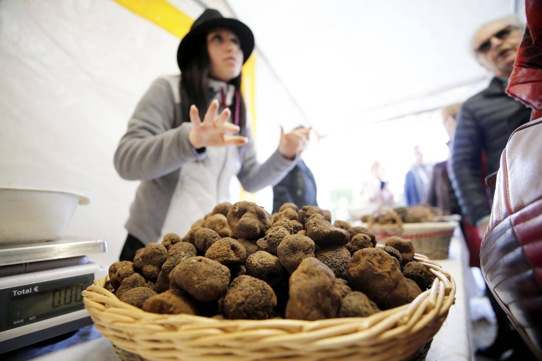 1.200 euros, le prix au kilo de la truffe! Soit 120 euros les 100g.