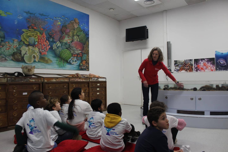Les élèves assistent au développement d'un écosystème à petite échelle.