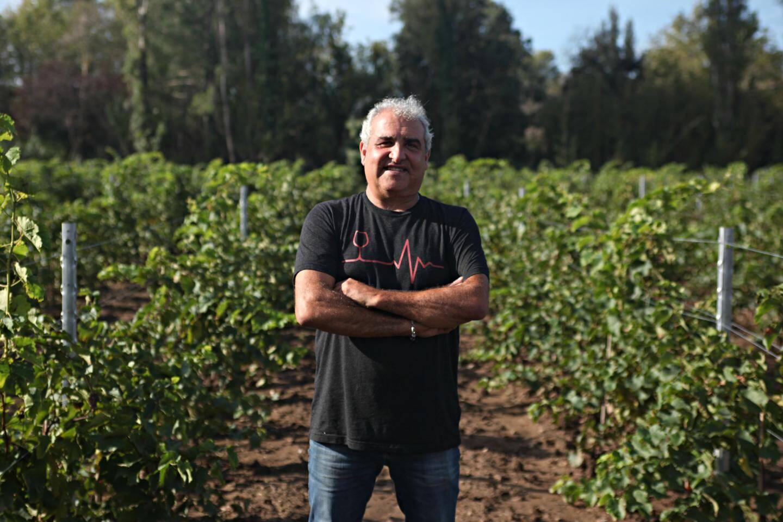 Pierre Audemard est l'un des premiers vignerons du Golfe à avoir investi dans les cépages résistants.