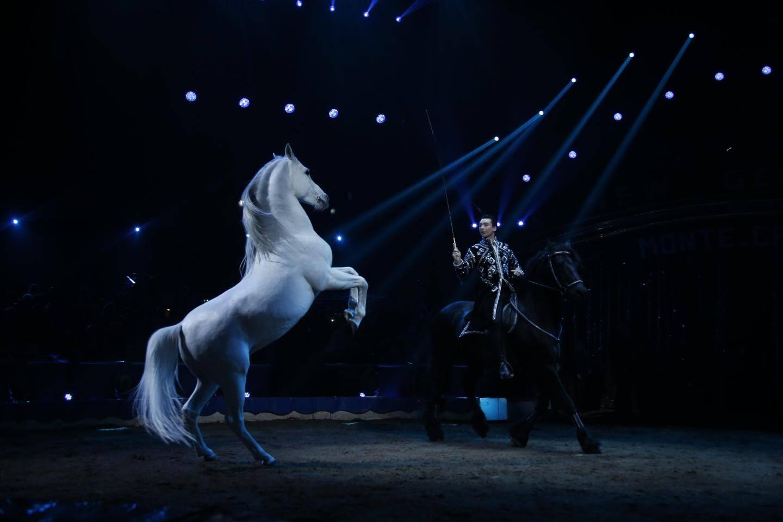 Ivan Frédéric Knie, comme un prince dans son numéro de chevaux en liberté.