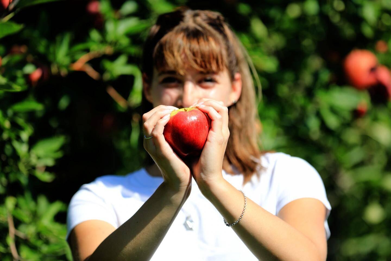 La fameuse pomme d'amour...