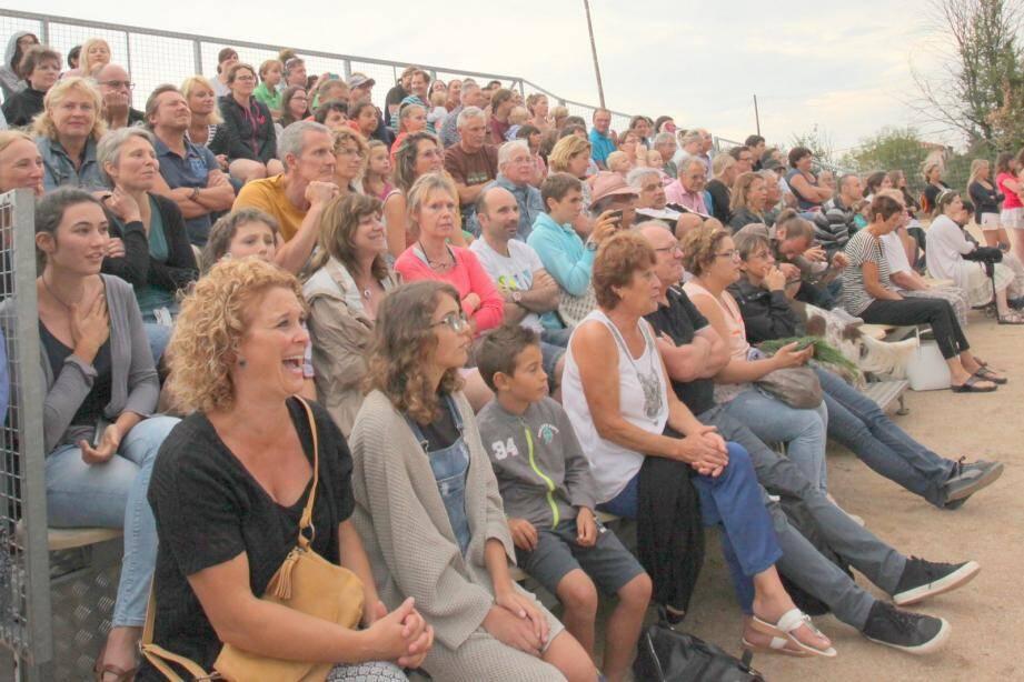 Dans les gradins du stade, rires garantis devant le spectacle de vachettes.