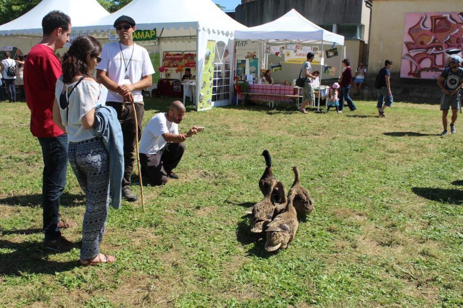 Les Biotois ont cultivé l'art de vivre en pleine conscience durant le festival.