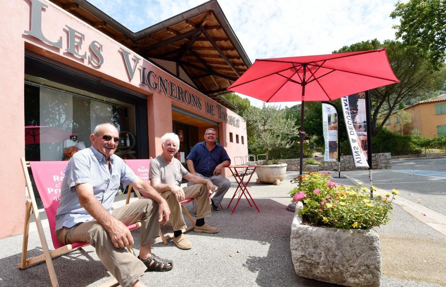 Taradeau, ce n'est pas seulement la Provence. Ni un petit village. C'est aussi et surtout les cépages, son poumon économique.