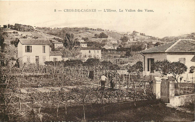 Le vallon de Vaux au Cros-de-Cagnes et ses cultures maraîchères.