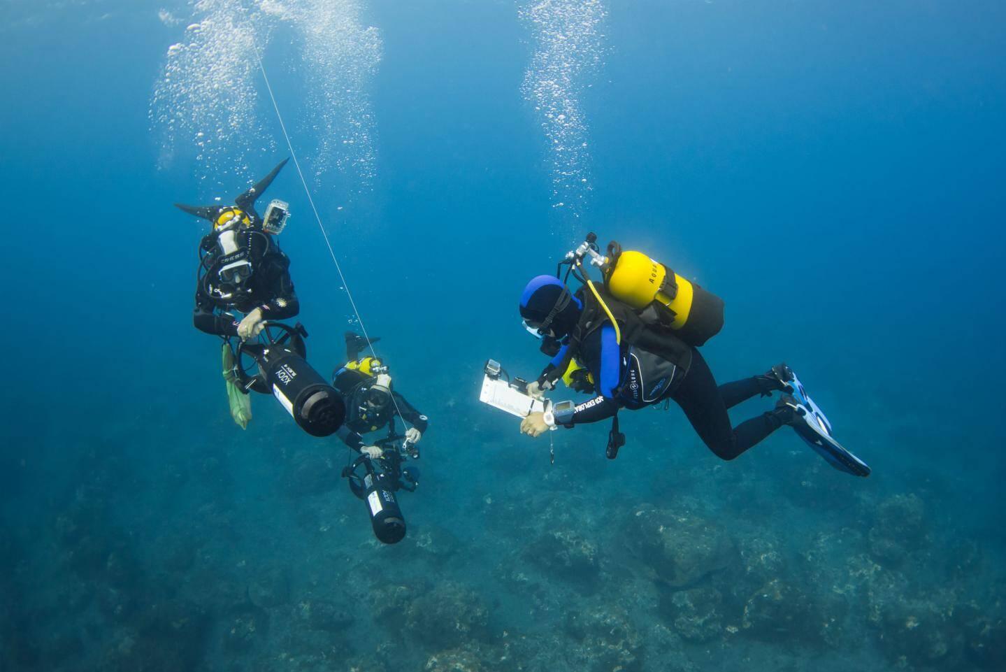Trois plongeurs recensent en ce moment les écosystèmes marins au nord de Madère, sur 22 mètres de profondeur et 50 kilomètres de littoral.