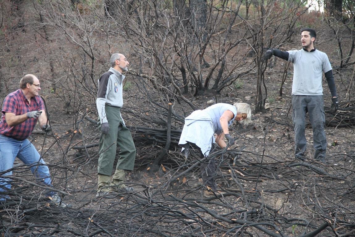 De gauche à droite : M. Lecat bénévole, Eric Serantoni technicien forestier du Parc national de Port-Cros, Catherine Huraut adjointe municipale à l'environnement et Benoît Berger agent du Parc national de Port-Cros du site Cap Lardier .
