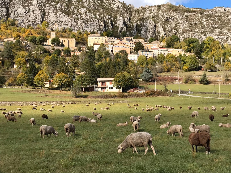 Comptez 1h30 de trajet depuis Grasse pour aller à Saint-Auban.