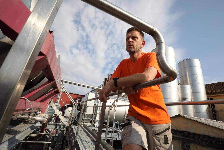 Eric Terrieux, l'œnologue rentre alors en scène pour procéder au pressage et à la vinification.